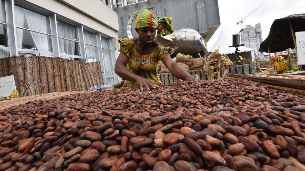 Mujer con granos de cacao.