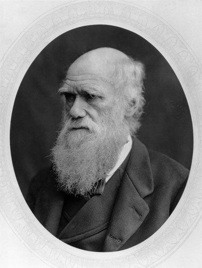 Darwin y Vladimir compartían ideas similares sobre la evolución.