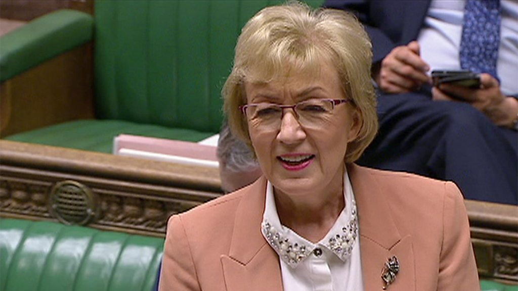 Brexit: Andrea Leadsom reads Valentine's ode to deal