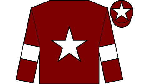Bbc Sport Grand National Pinstickers 39 Guide To Aintree Runners Riders