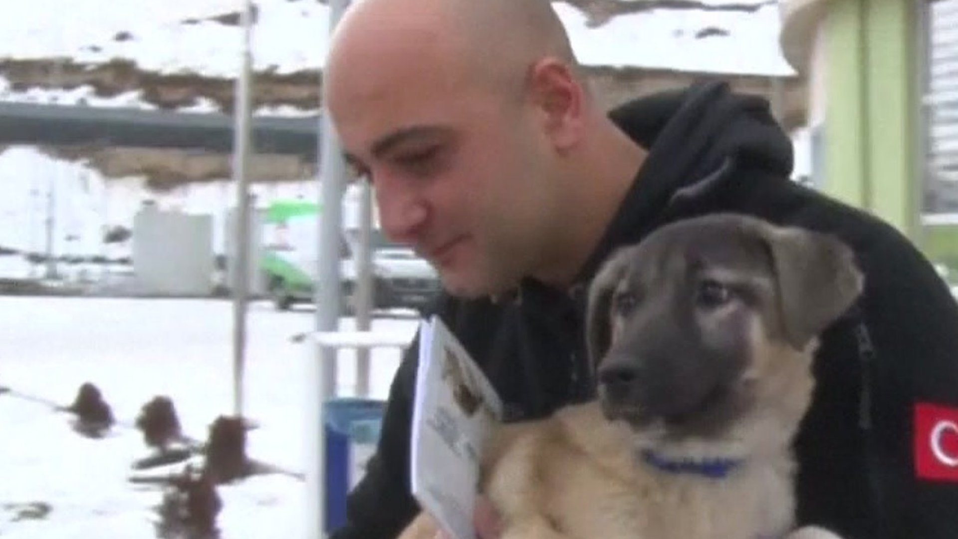 Police diver adopts dog rescued from icy lake