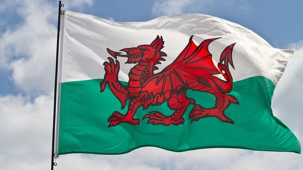Rhaid hybu 'Brand Cymru' wrth farchnata bwyd wedi Brexit