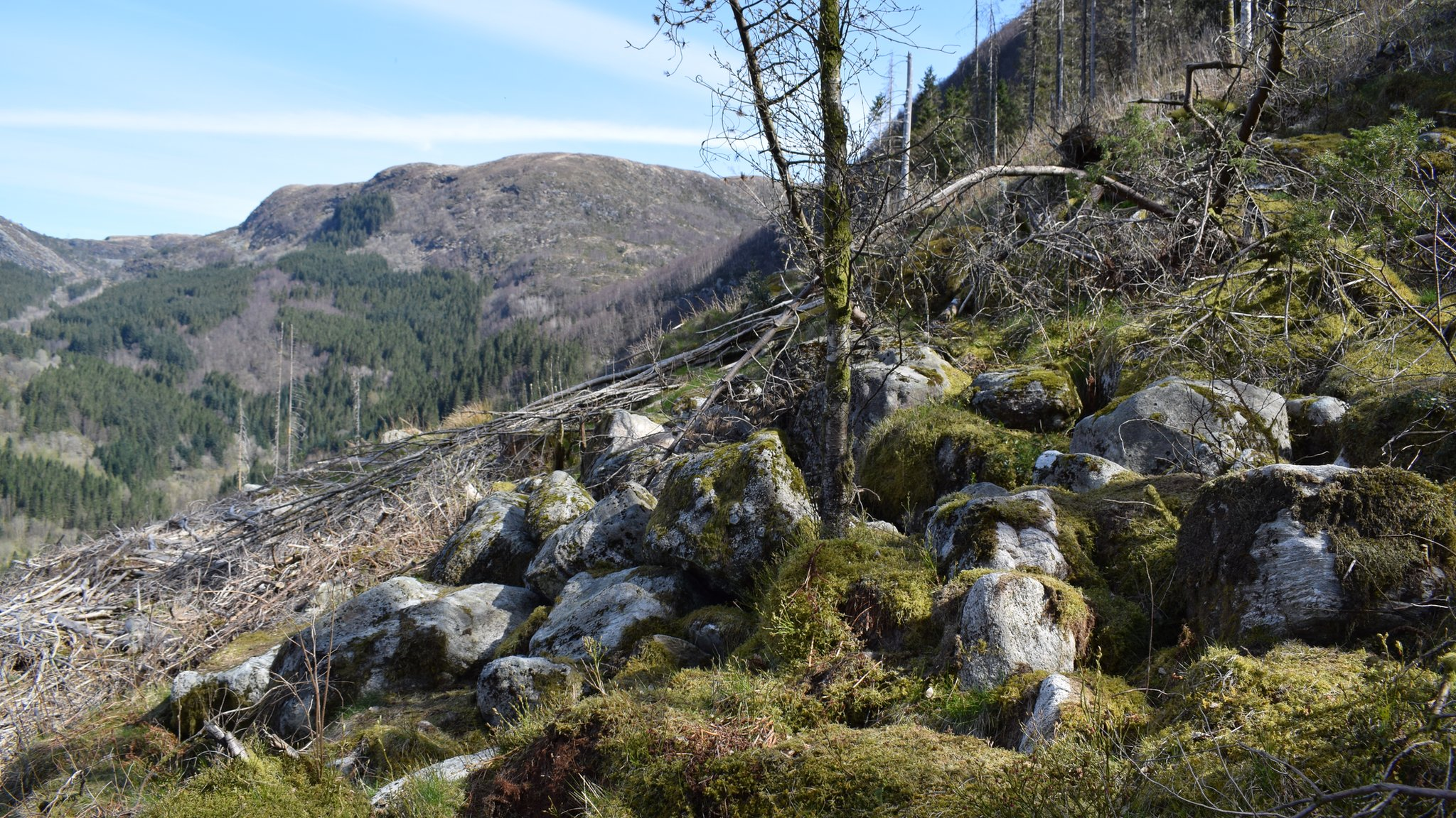 Rocas en una montaña