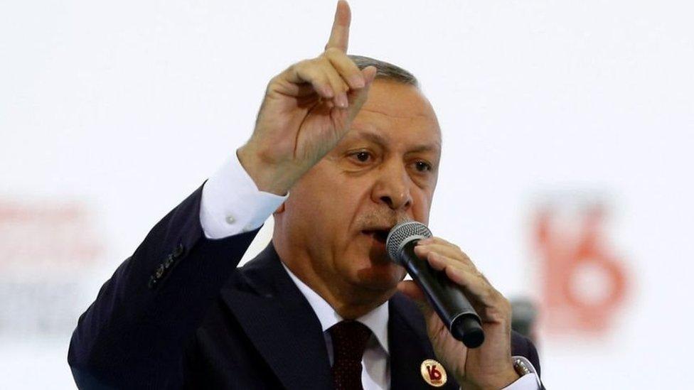 """أردوغان يصف قادة ألمانيا بـ """"أعداء تركيا"""""""