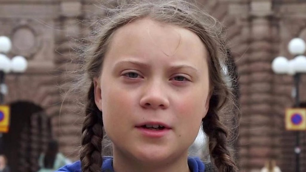 Greta Thunberg: The Swedish teen inspiring climate strikes