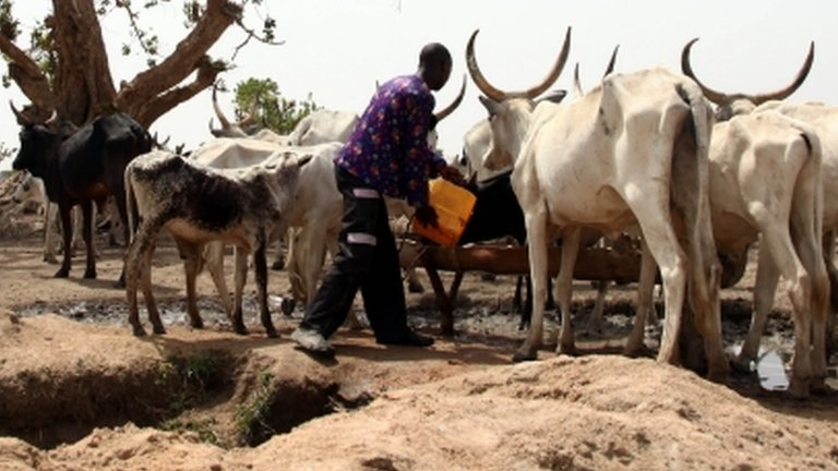 Clashes in Nigeria between farmers and herders kill 86 | BBC