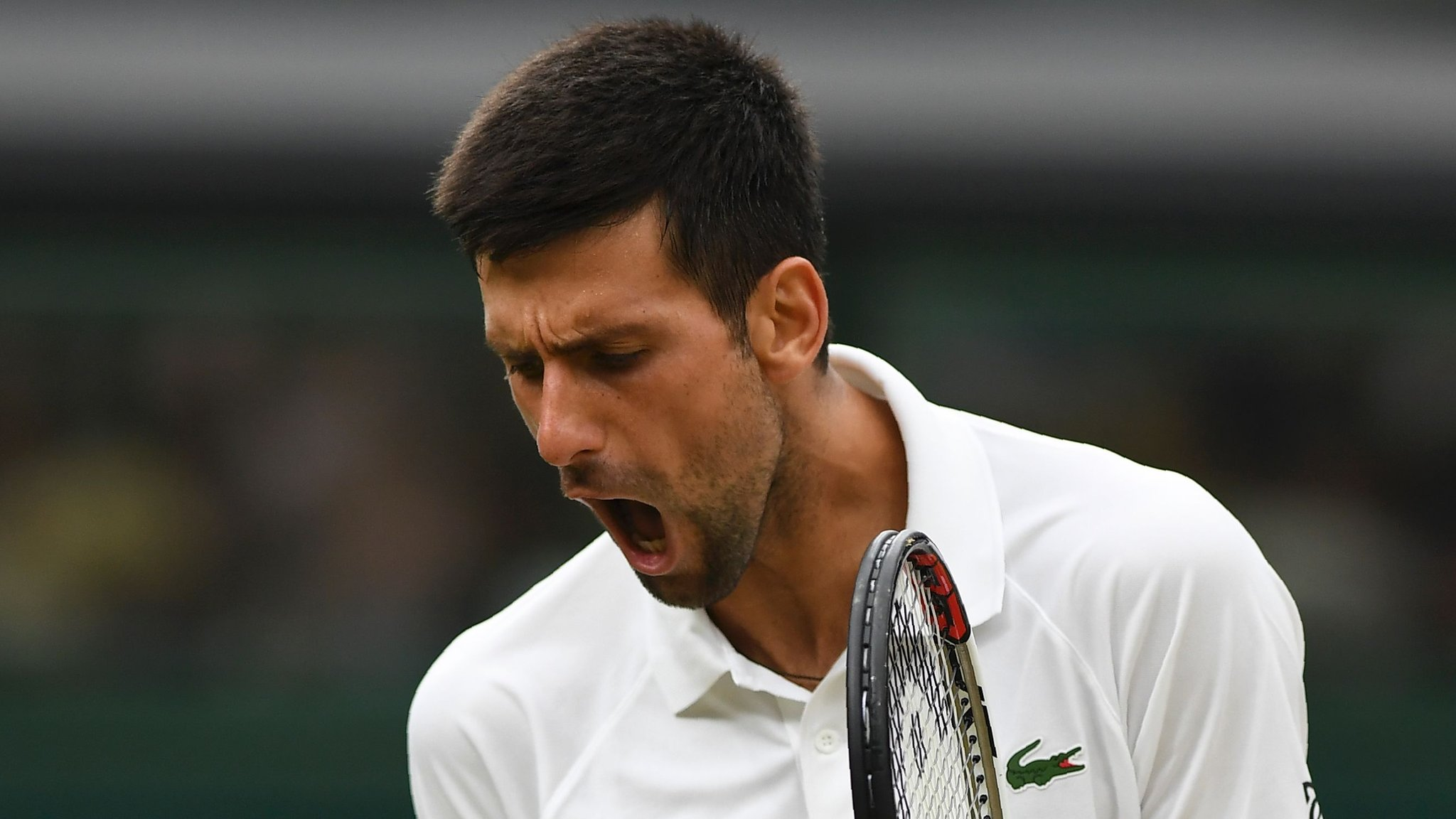 Novak Djokovic: Twelve-time Grand Slam champion will not play again in 2017