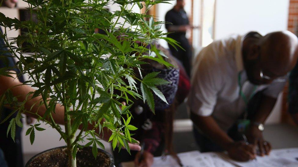 A man fills out a job application at Colorado's first cannabis job fair