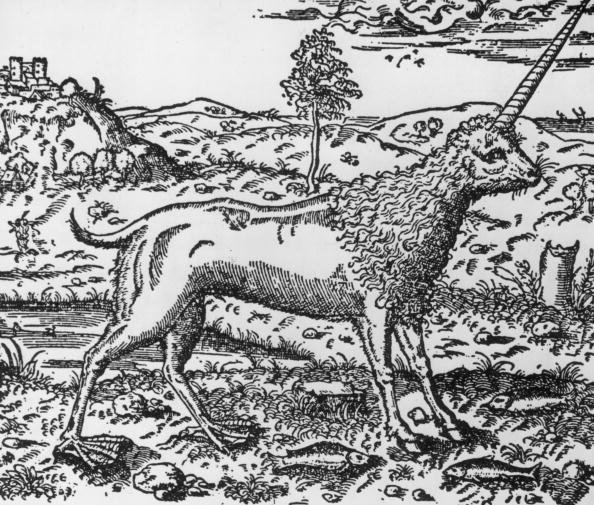 Representación de un unicornio del siglo XVI. No se parece mucho a la figura actual de los unicornios.