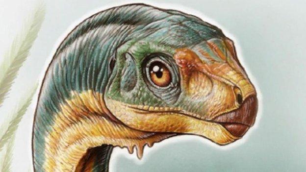 'Frankenstein dinosaur' mystery solved