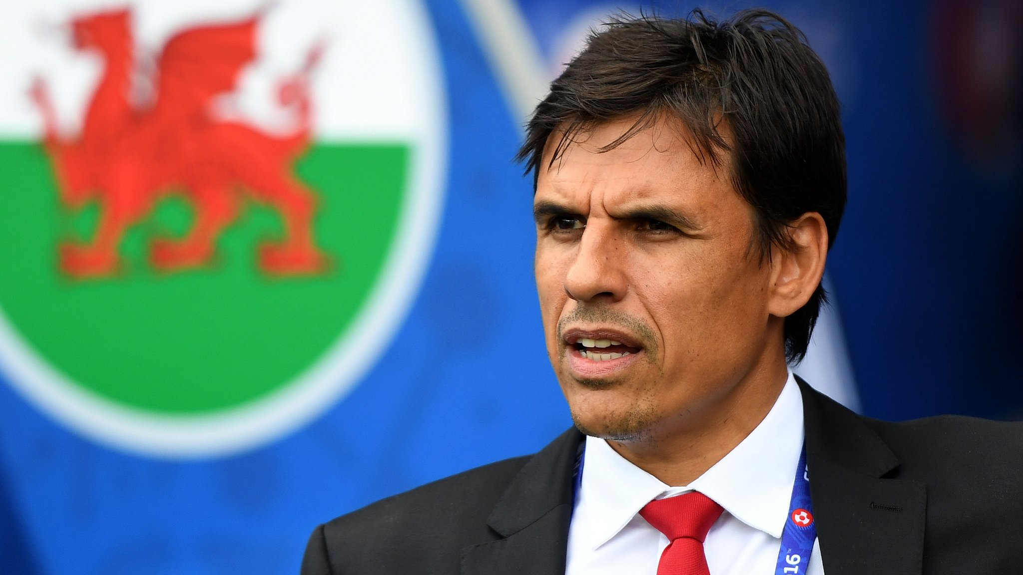 Next Wales boss will be 'foreign possibly, but definitely not English'