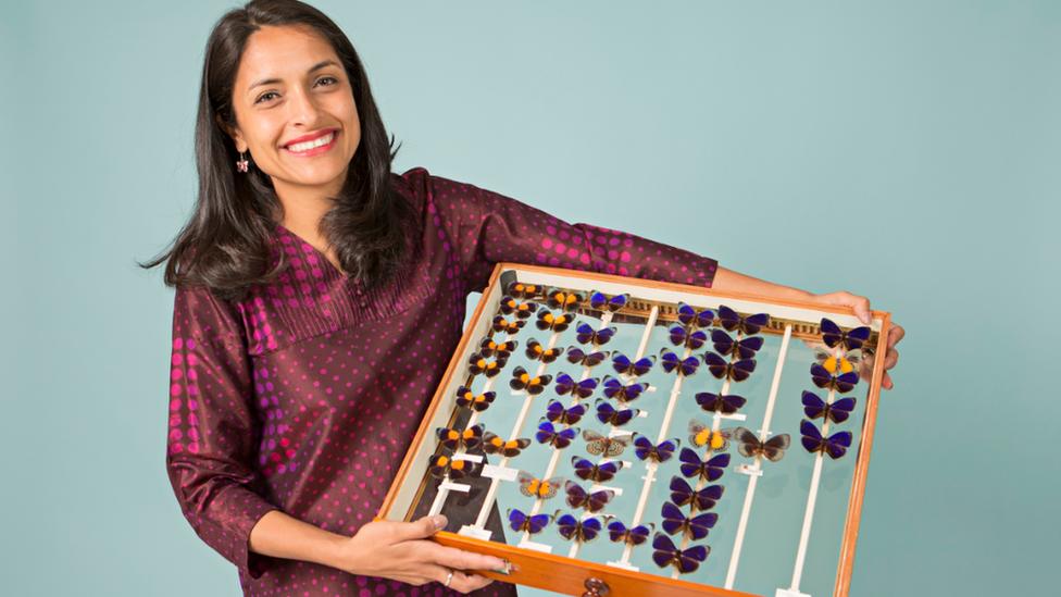 Blanca Huertas muestra una pequeña colección de mariposas. (Foto: Museo de Historia Natural de Londres).