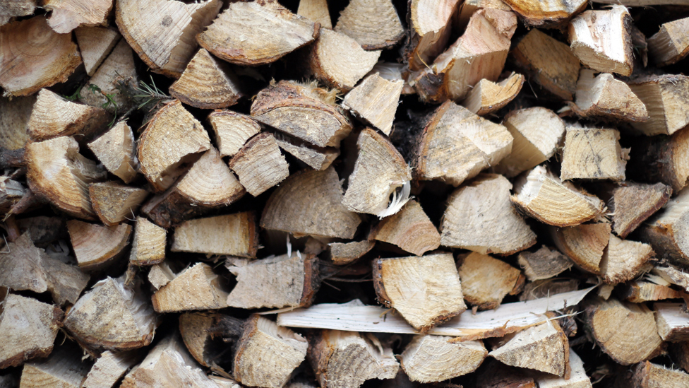 Timber firms have 'no confidence' in NRW forestry division