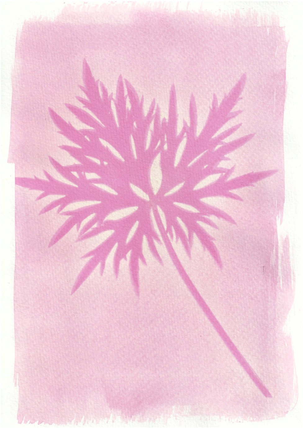 An anthotype print of a large purple leaf