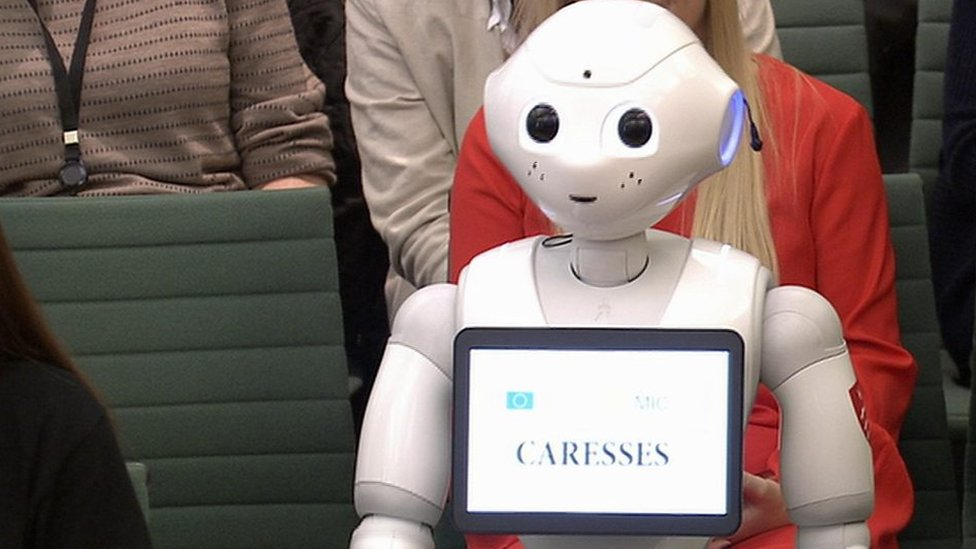 Pepper the robot tells MPs about artificial intelligence