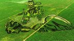 A mural made of rice plants is seen at a paddy field in Shenyang, Liaoning province, China