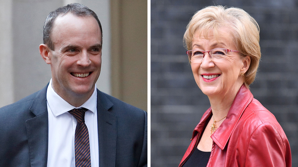Tory leadership: Dominic Raab and Andrea Leadsom enter race