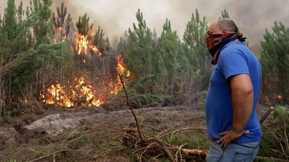 Кількість жертв лісових пожеж в Португалії та Іспанії зростає
