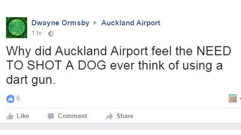Captura de pantalla de comentarios de ira en la página del aeropuerto de Auckland.