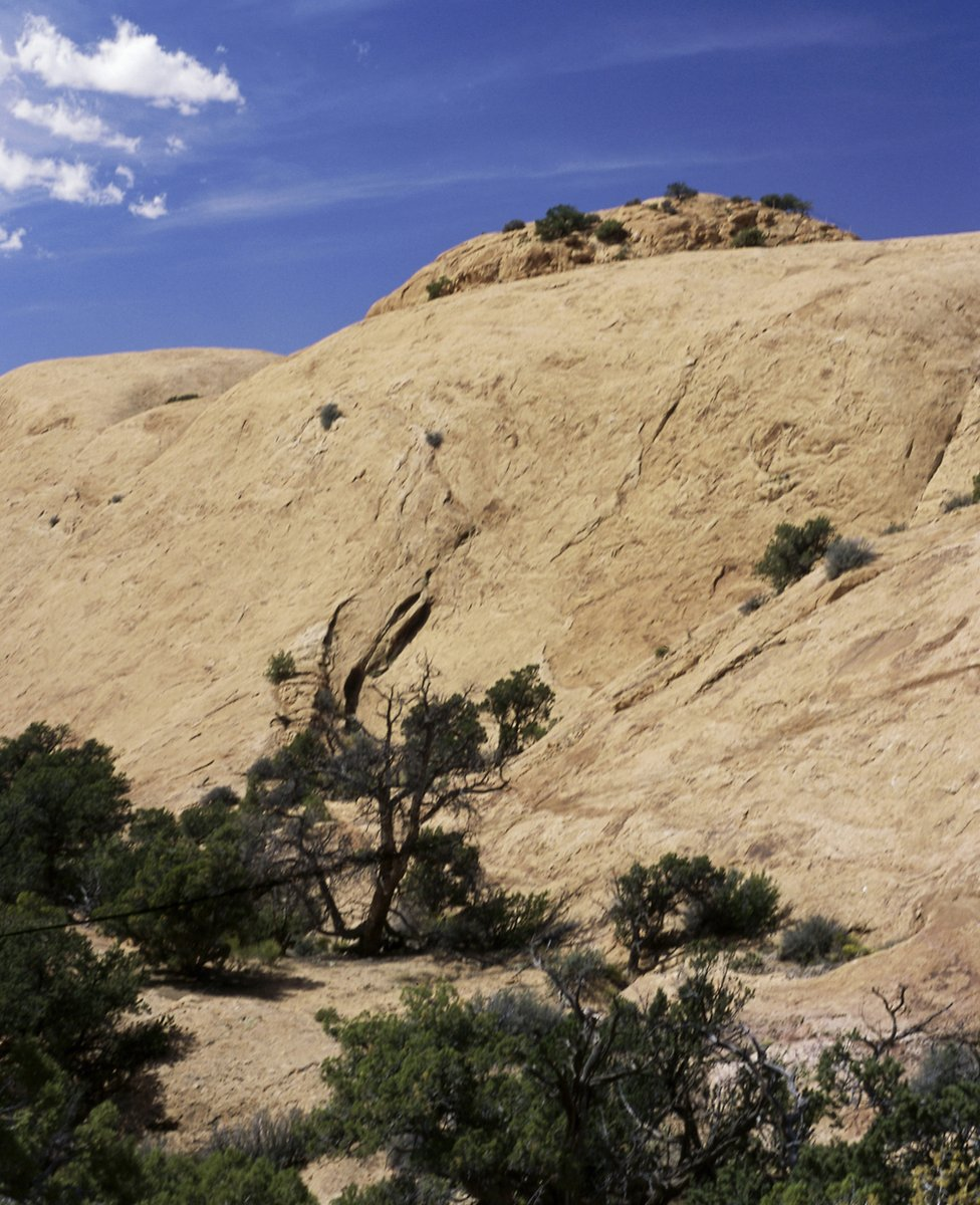 Whale Rock, Utah
