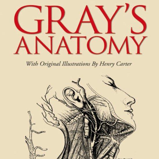 Gray'S Atlas Of Anatomy - eBook - WOOK