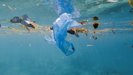 """BP: Plastic ban """"could have unintended consequences"""""""
