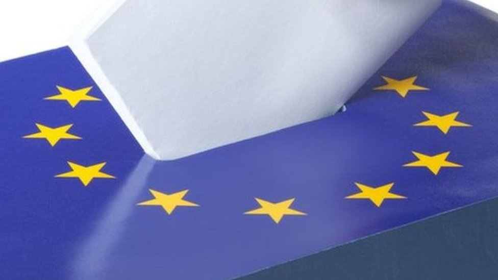 Eleven candidates to stand for EU elections in NI