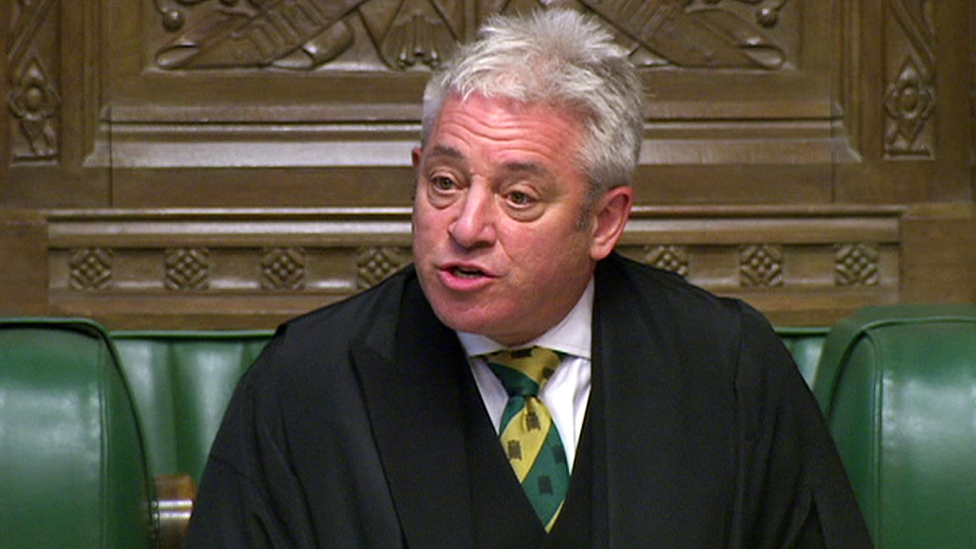 John Bercow 'to quit as Speaker next summer'