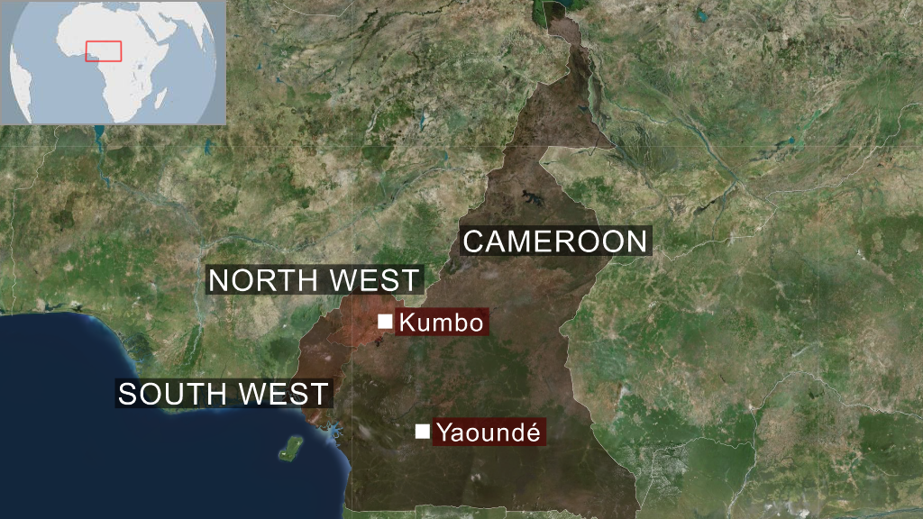 Cameroon kidnap: 170 students freed
