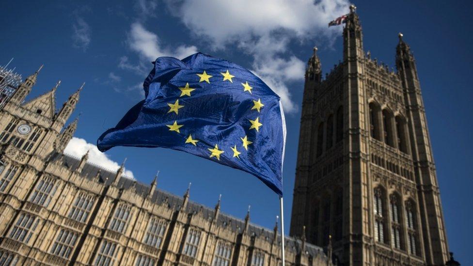 Brexit amendments: What could MPs vote on?