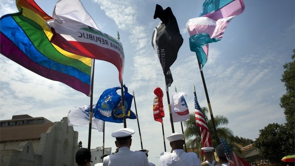 Trump's transgender military ban 'not worked out yet'