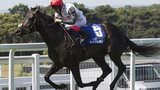Golden Horn wins at Sandown