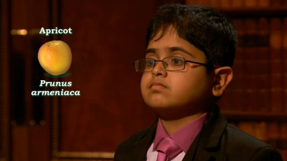 Child Genius: 12-year-old Rahul wins Channel 4 show