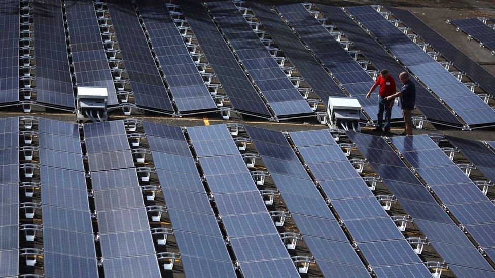 Paneles solares colocados por Tesla en Puerto Rico.