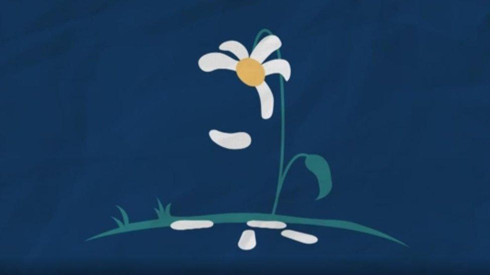 Margarita perdiendo pétalos. Ilustración de soledad, por Rabia Ali.