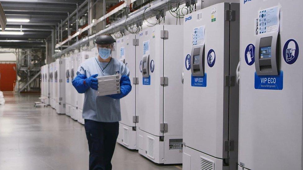 Covid-19: Vaccine của Pfizer đã được FDA phê duyệt sử dụng khẩn cấp - BBC  News Tiếng Việt