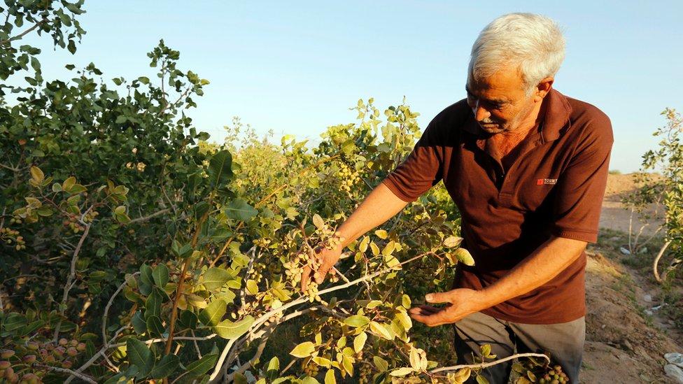 En Irán preocupa la sequía, que en California fue recientemente superada.