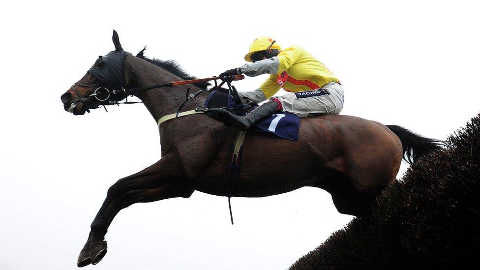 Jockey Club braces itself for 'financial challenges'