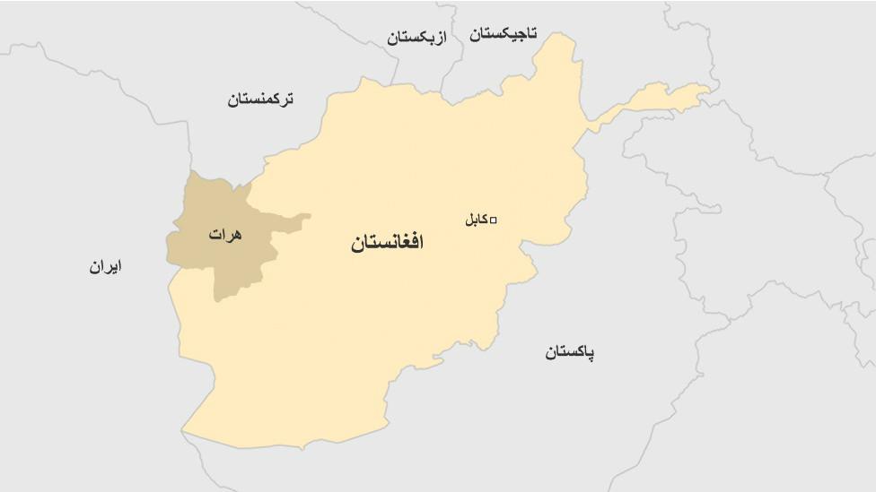 یک کارمند ارشد ولایت هرات به اتهام 'جاسوسی' برای ایران بازداشت شد