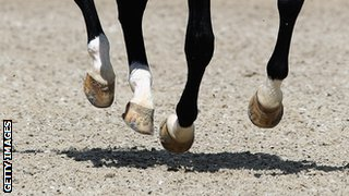 horses hooves elevated above the ground