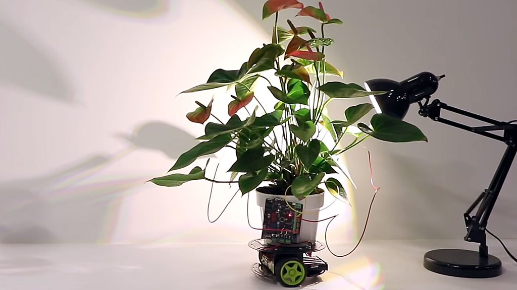 Cyber-plant drives towards light - and other tech news