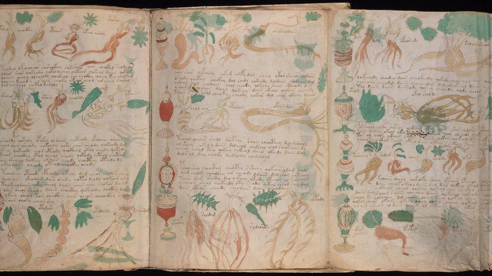 Imágenes del libro Manuscrito Voynich.