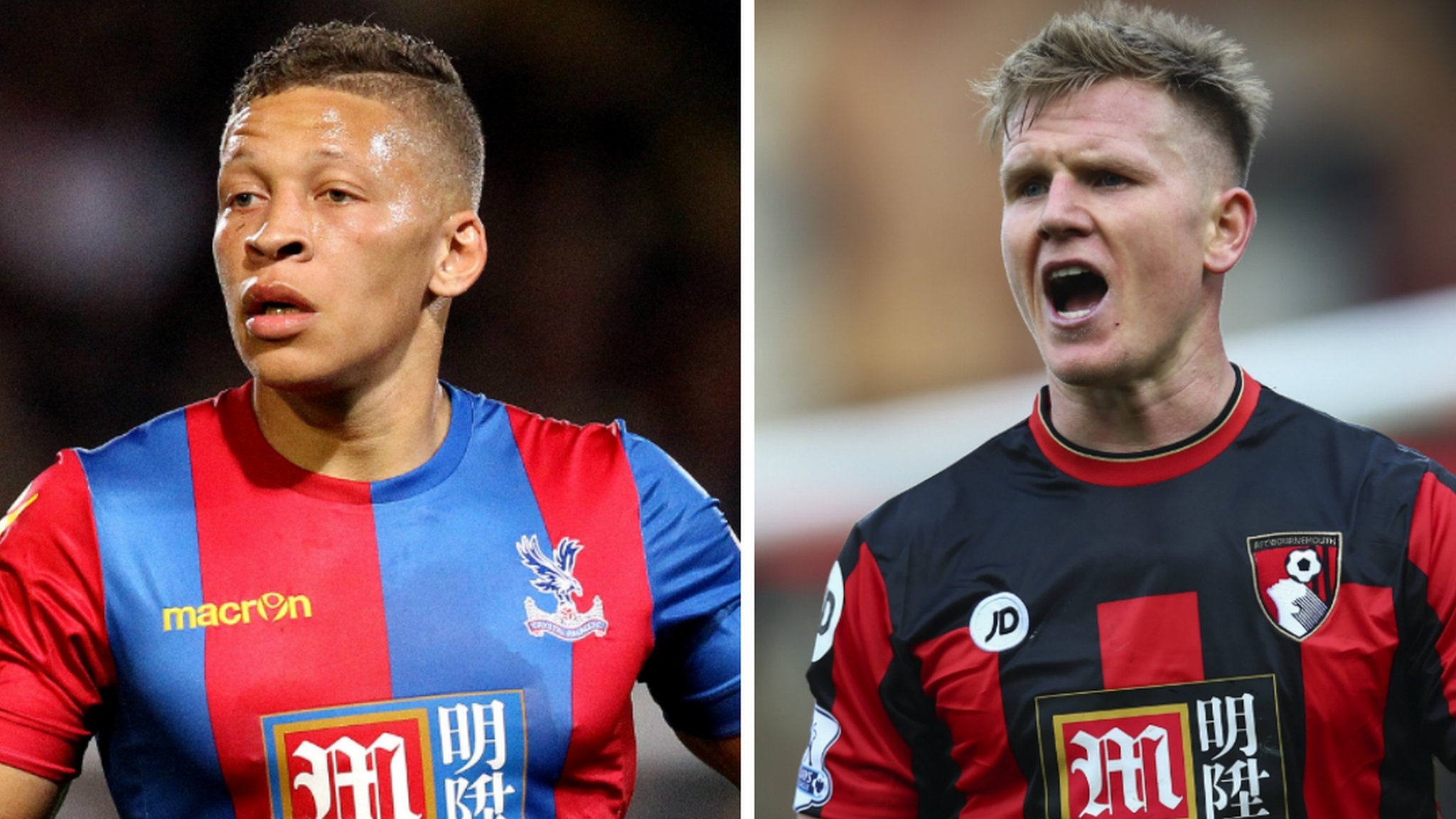 Newcastle United: Dwight Gayle and Matt Ritchie join Championship side