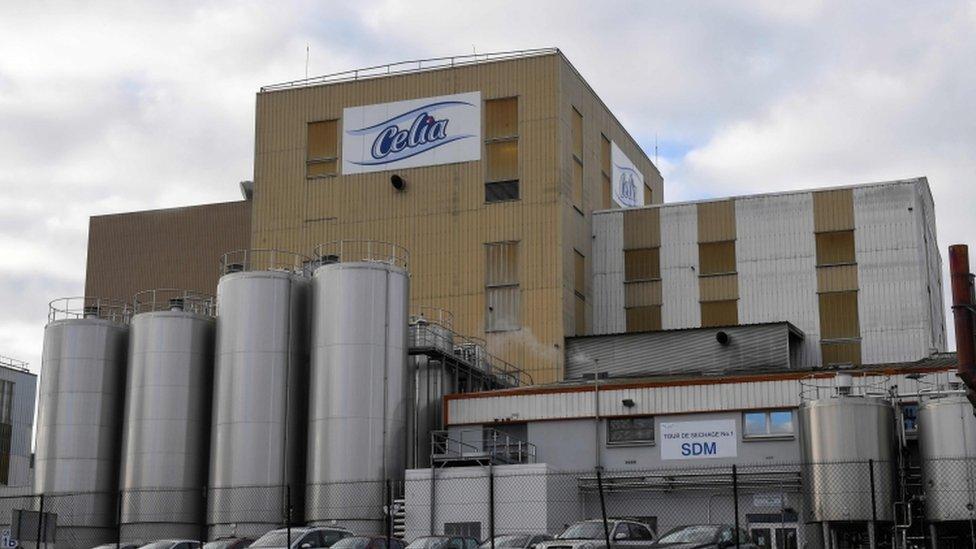 صورة خارجية لمصنع سيليا
