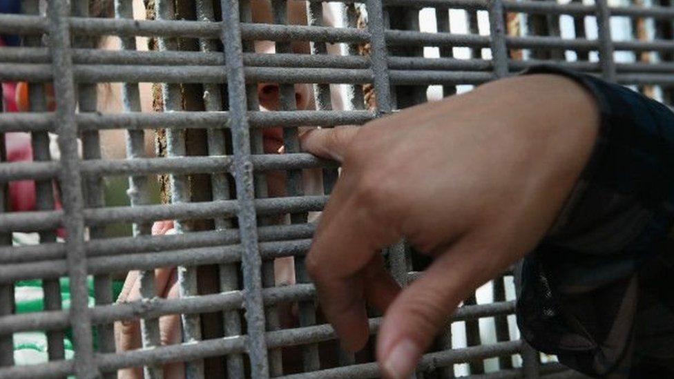 Una mano sobre el muro fronterizo