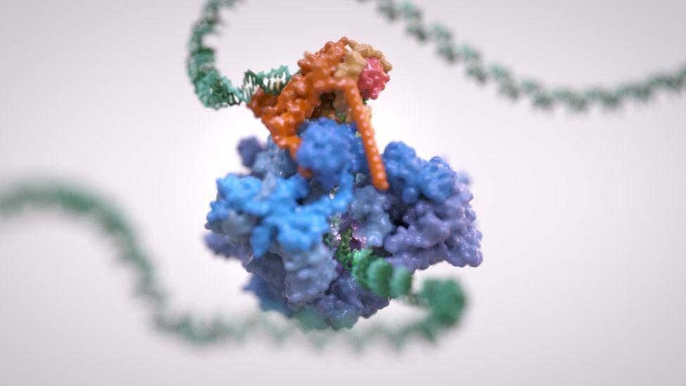 Вчені розробляють нові ліки проти раку - до чого тут Ван Гог?