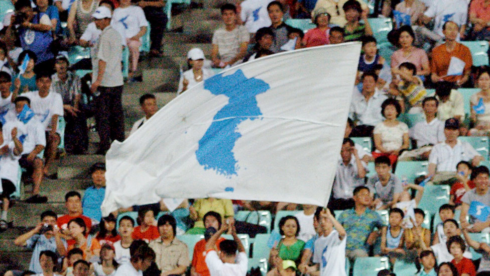 Koreas to march under single 'united' flag in Olympic Games