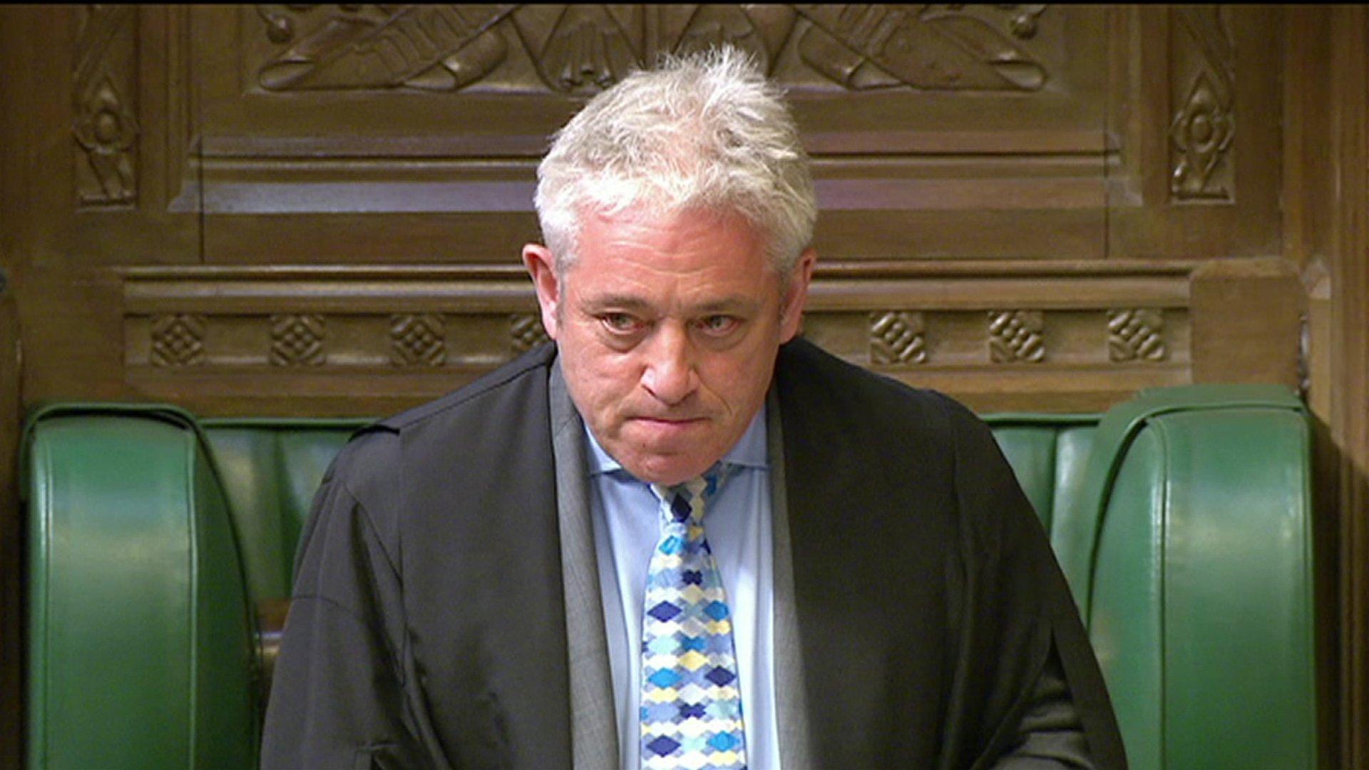 Speaker John Bercow admits muttering word 'stupid'