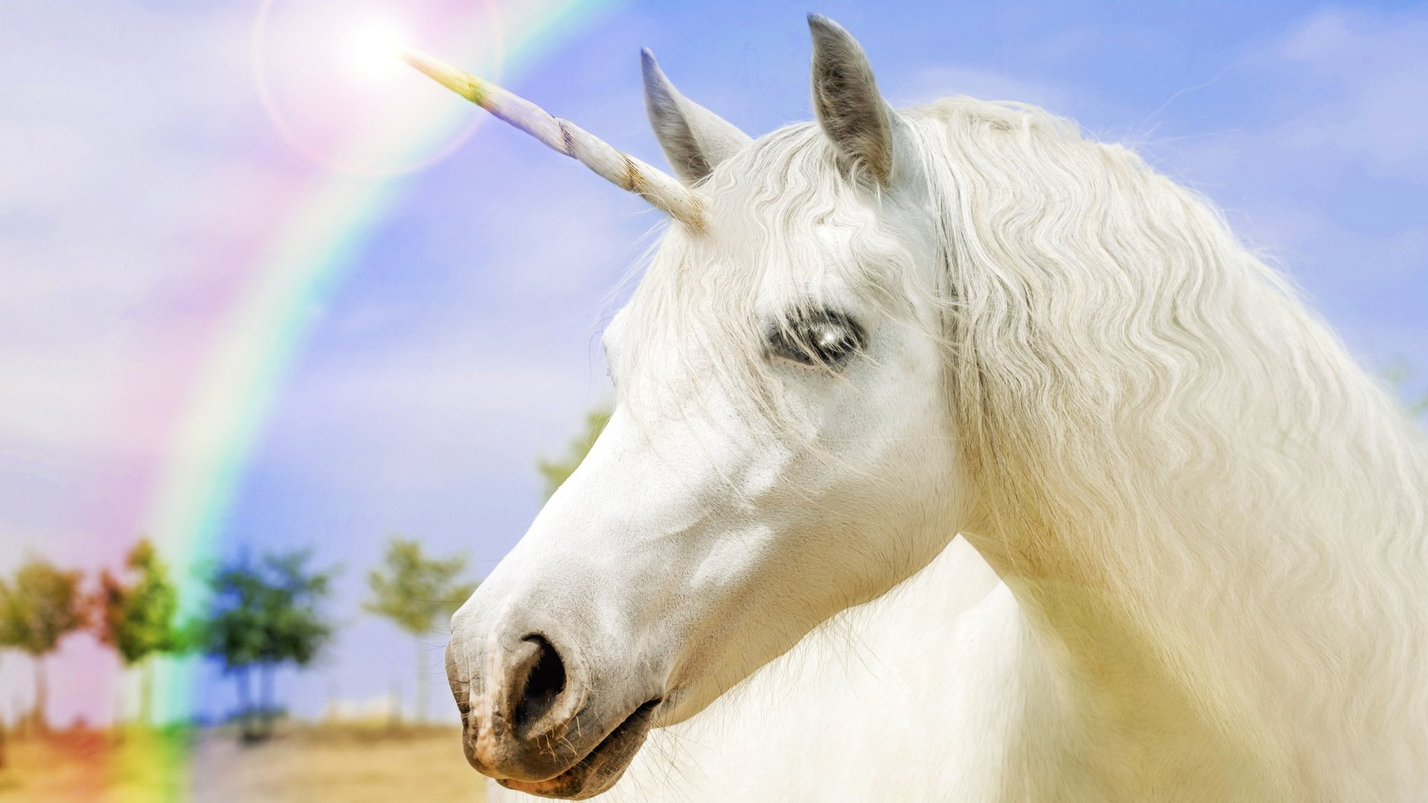 It's National Unicorn Day so what's the deal? - CBBC Newsround