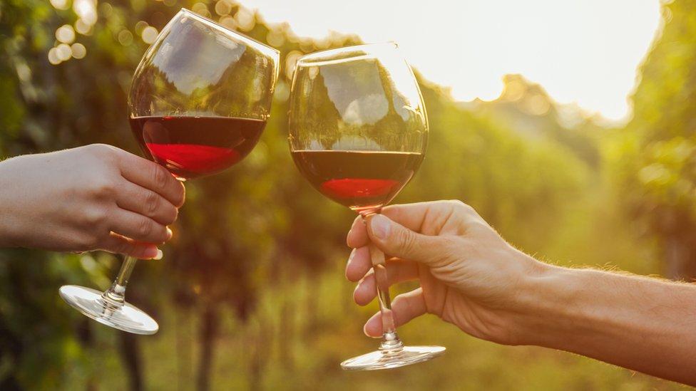 Por Qué El Vino Tinto Puede Ser Bueno Para Tus Intestinos Si Lo Bebes Con Moderación Bbc News Mundo
